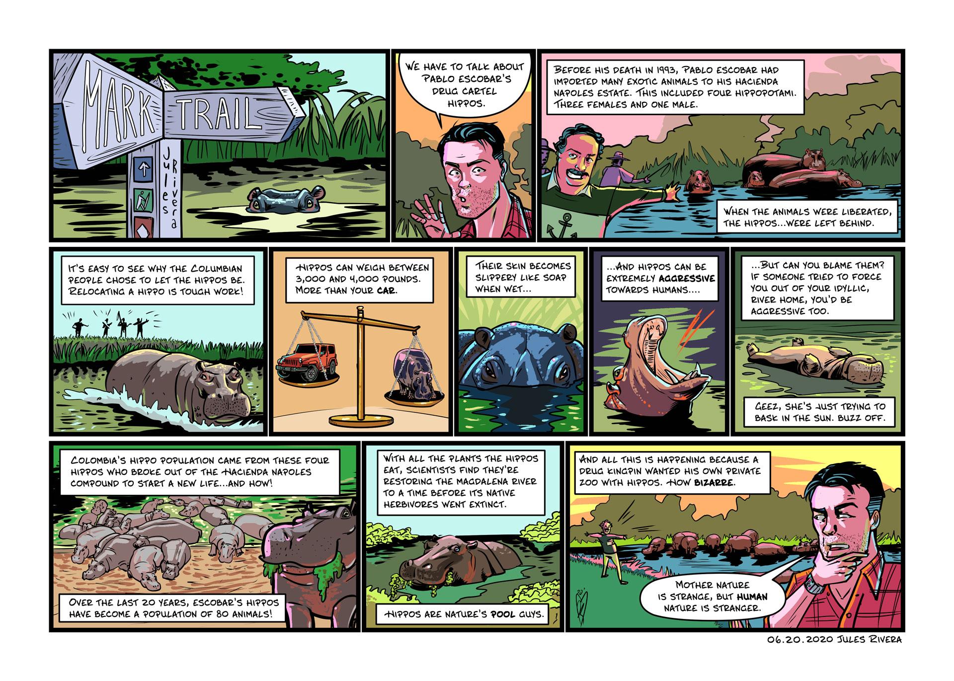 Jules Rivera Art Test - Hippos