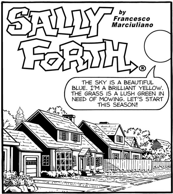 Sally Forth Drop Panel